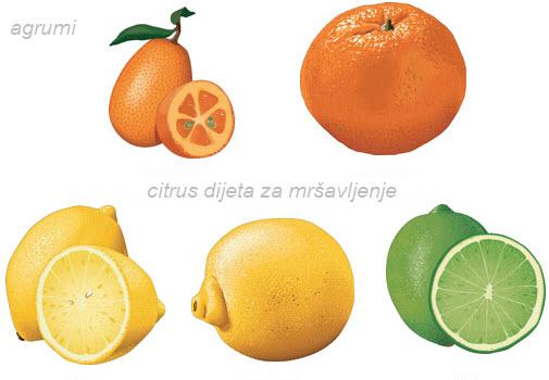 citrus dijeta iskustva