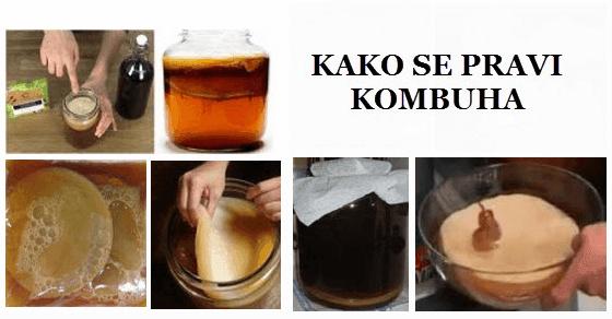 Kombuha gljiva – kako se priprema recept