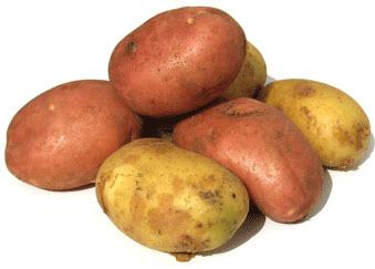 krompir dijeta iskustva | recepti | jelovnik | kalorije