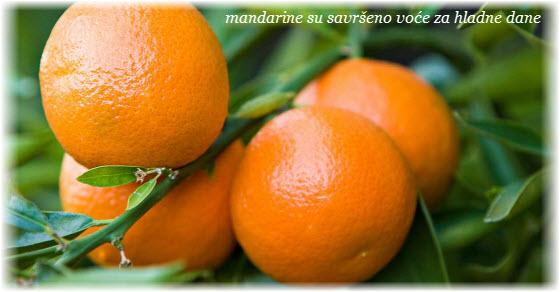 mandarine kalorije