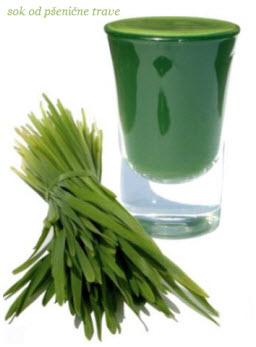 Sok od pšenične trave recept za savršeno zdravlje