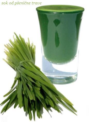sok od psenicne trave