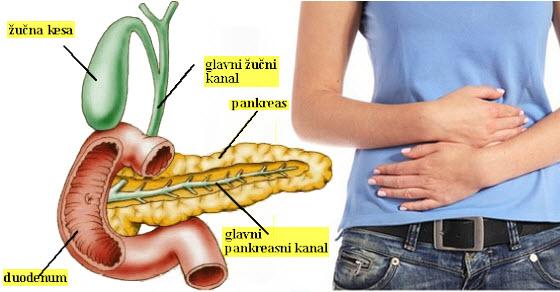 kamen u zuci simptomi | lecenje | ishrana | dijeta