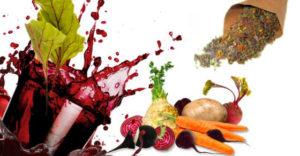 brojsova terapija gladovanjem