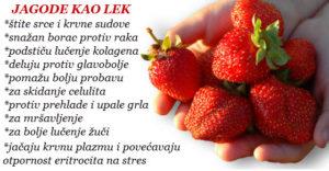 jagode za zdravlje