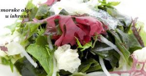 morske alge u ishrani