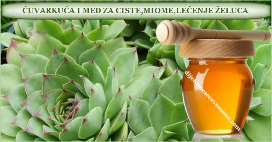 caseta de vigilancia y miel como medicina
