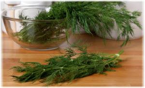 kopar biljka kao lek
