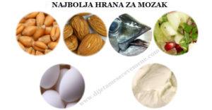 hrana za mozak i koncentraciju