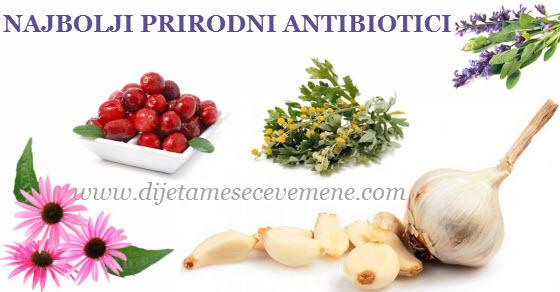 Najbolji prirodni antibiotik recepti