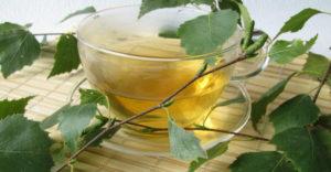 breza čaj lekovitost