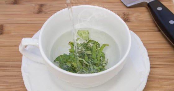 čaj od bosiljka