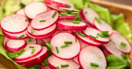 Salata od rotkvica recepti