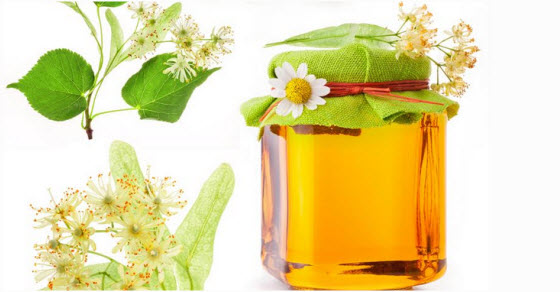 Lipov med kao lek za želudac