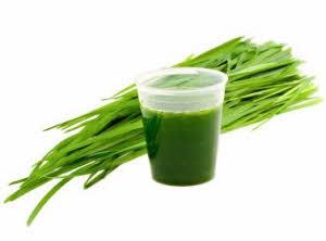 ječmena trava sok