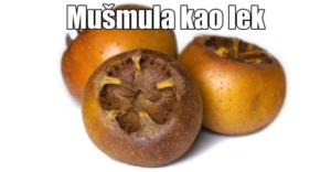 mušmula1 (1)