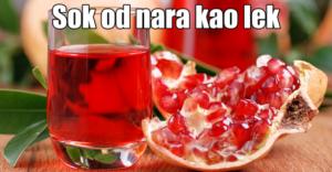 voće nar kao lek (1)