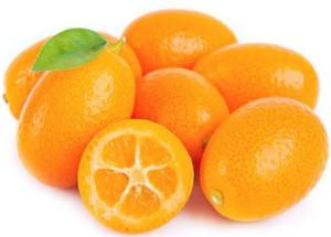 šta je kumkvat voće