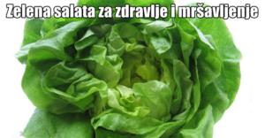 dijeta sa zelenom salatom (1)