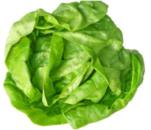 organska zelena salata za zdravlje