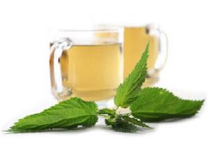 Kako se pravi čaj od koprive