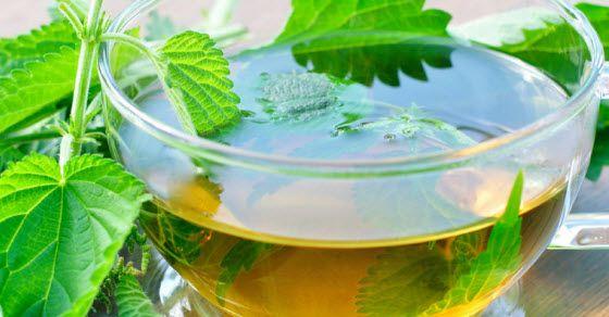 kopriva za kosu u vidu čaja
