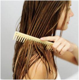 čičkovo ulje za kosu upotreba