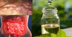 kako očistiti organizam prirodnim putem