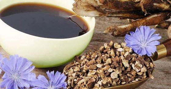 zdrava kafa od cikorije