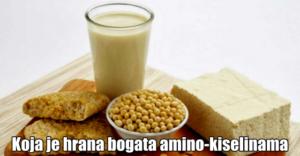 kiseline amino