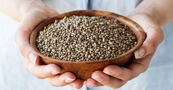 Seme konoplje kao lek upotreba i recepti