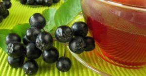 aronija čaj dejstvo i upotreba