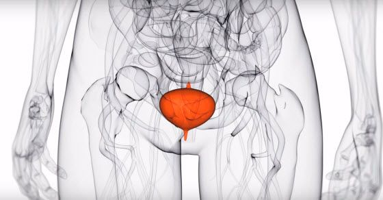Povišeni leukociti u urinu kod žena i muškaraca