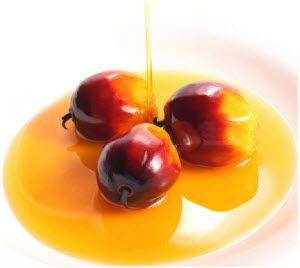palmino ulje u ishrani