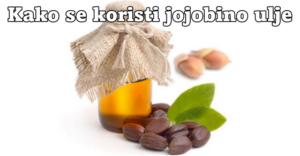 jojoba1