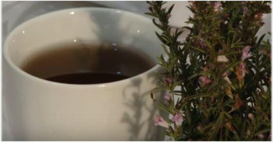 planinski čaj za potenciju