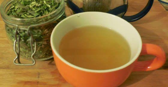 Čaj od lista masline recepti i upotreba