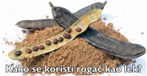 rogonja (1)