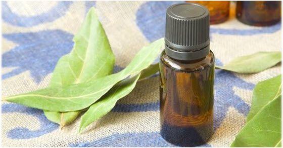 Lovorovo ulje upotreba i recepti