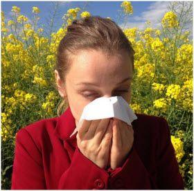 Top prirodni lekovi za alergiju