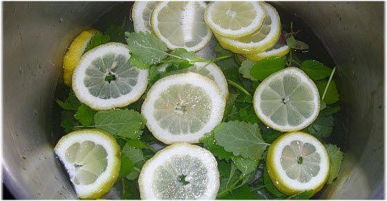 Sok od nane i limuna kako napraviti