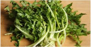 maslačak salata za zdravlje