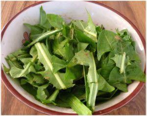 zdrava salata od maslačka recept