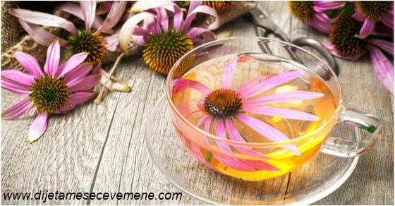 Ehinacea kapi i čaj za snažan imunitet