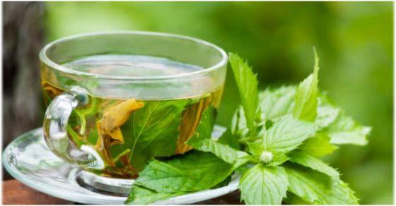 Čaj od nane za zdravlje i mršavljenje