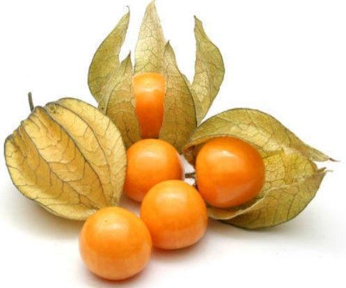 kako izgleda peruanska jagoda