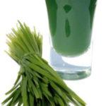 sok od psenicne trave recept